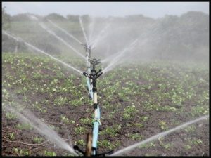 Persian creations - water irrigation system