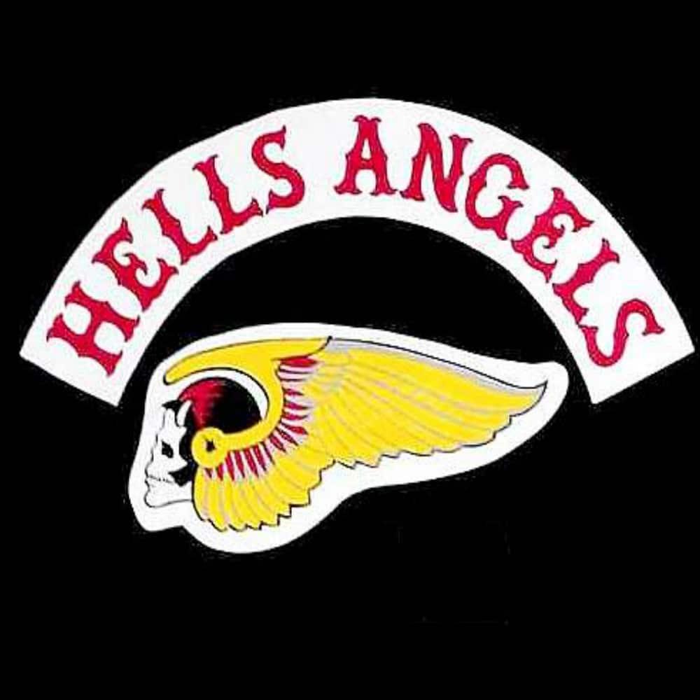 Hells angels biker gang