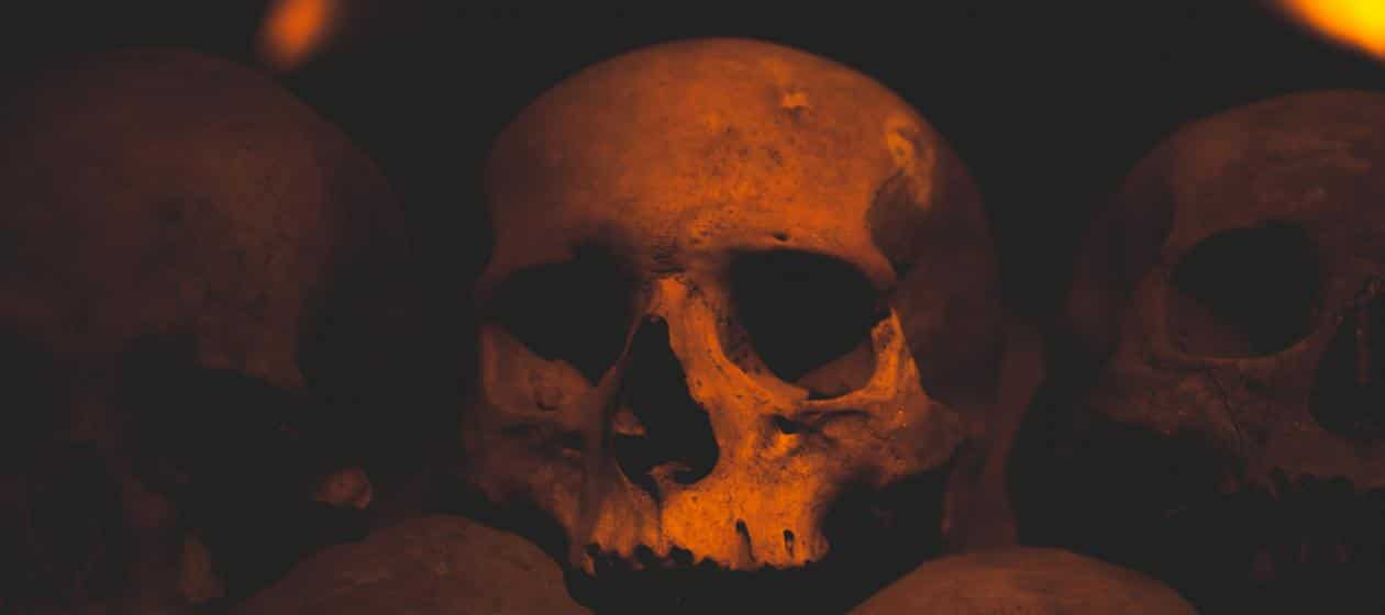 Perhaps Rats Didn't Cause the Black Plague After All