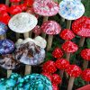 Magic Mushrooms Could Reboot Brains in Depressed People