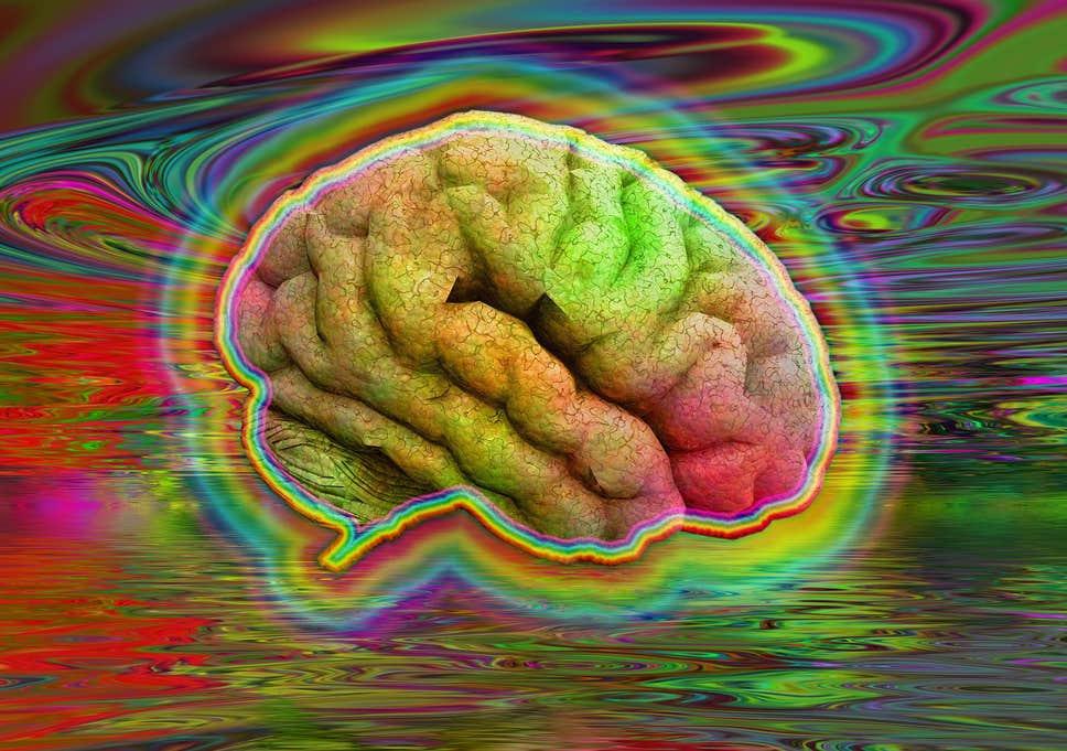 Brain Enhancing Pills Are Becoming More Popular