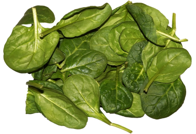 Amazing Carbon Nanosheets from Spinach May Energize Fuel Cells