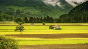 Sustainable Farming methods